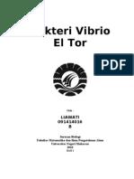 Bakteri Vibrio El Tor