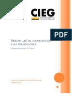 Desarrollo de Competencias Para Supervisores