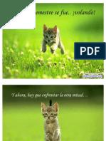 Se_positivo_el_resto_del_ano-12197