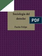 Sociologia Del Derecho - Felipe Fucito