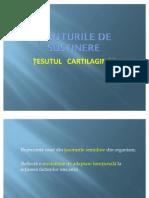 Tesutul Cartilaginos Si Osos 1