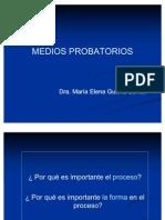 MEDIOS_PROBATORIOS