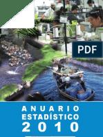 anuario-estadistico-2010