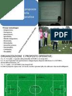 Organizzazione e Proposte Specific He Della M.O.