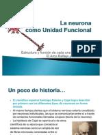Objetivo 2. La Neurona Como Unidad Funcional