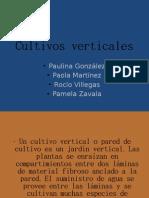 32297011-Cultivos-verticales