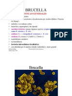 brucelosis_clase