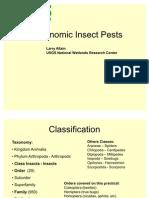 IdentifikasiKlasifikasiAgronomic Insect Pests