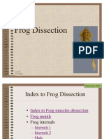 Frog Diss