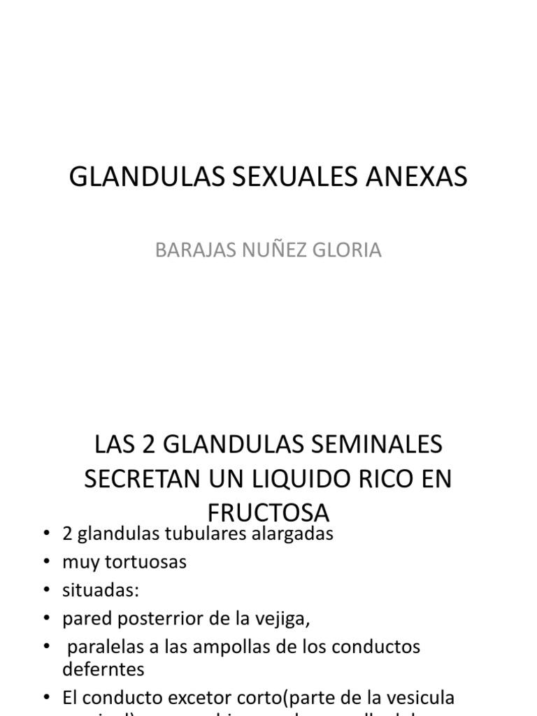 secreciones de la próstata y la glándula tubular
