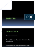 Magnesium 2003