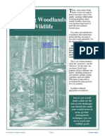 Managing Woodlands For Wildlife