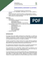Clase 3 Nutricion Madre Gestacion Lactancia 2009