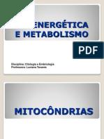 bioenergetica_e_metabolismo2011.2