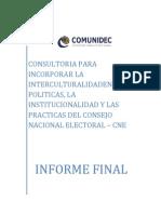 Informe Final de consultoría