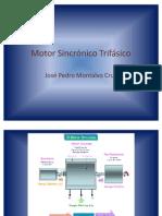 Motor Sincrónico Trifásico j.p.m.c