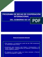 Programa de Becas de Cooperacion Internacional