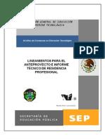 Lineamientos Anteproyecto e Informe 2010