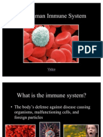 The Human Immune System