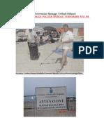 Ordinanze Delibere Determine Spiagge Tributi Bilanci Gara Gestione Spiagge Pulizia Spiagge Temporary Ato PA1 AG GROUP