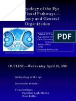2003-04-16 Peds Eye Embryo