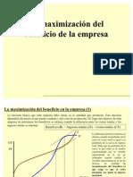 maximizacionbeneficio-090530070958-phpapp02