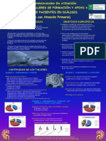PDF Def Poster Seden 2011