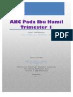 ANC Pada Ibu Hamil TM 1