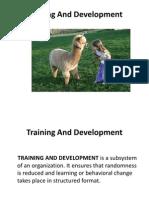Training and Development-1