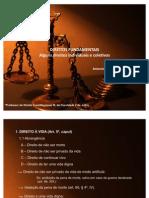 Direitos Fundamentais - Ernesto I