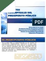 Aspectos Conceptuales Del Presupuesto Publico.