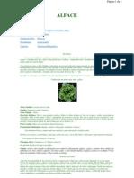 Www.projetos.unijui.edu.Br a Modelagem Alface Index