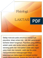 fisiologi-laktasi