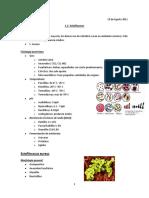 1.3-Estafilococos