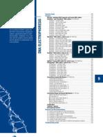 9 DNA Electrophoresis2010