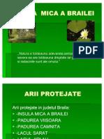 conservareabiodiversitatiiinjudetulbraila