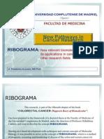 Ribograma Project
