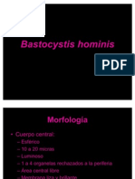 Bastocystis hominis