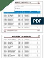 kardex de calificaciones