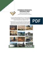 Brochure Consorcio Final
