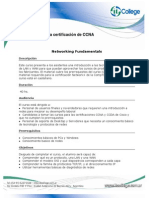 Programa CCNA - Temarios