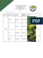 olericultura-tarea1
