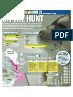 5 Min Seal Hunt