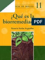 ¿Qué es la biorremedación UNAM
