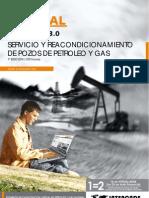 Servicio Reacondicionamiento Pozos Petroleo Gas