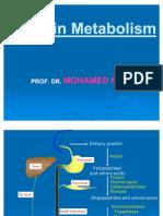 Protein Metabolism and acids SamyA1