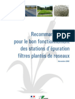 filtres_plantes_roseaux