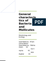 General Characteristics of Bacteria and Mollicutes
