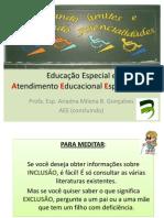 Educação Especial e AEE