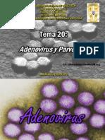 TEMA 20 Adenovirus y Parvovirus